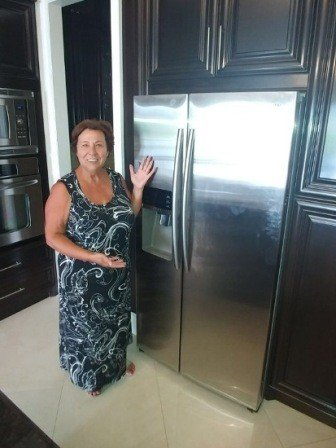 fridge repair Milton