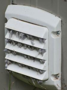 full dryer service maintenance for vent